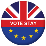 EU Referendum Vote Stay 58mm Keyring